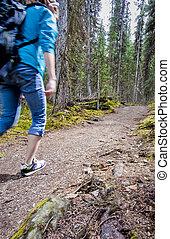 escursionista, montagne, piste