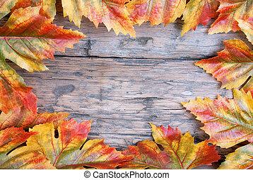 esdoorn blad, frame, op, hout
