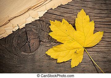 esdoorn blad, op, hout