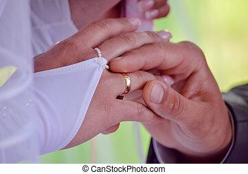 esküvő párosít, cserél, gyűrű, ujjak, closeup