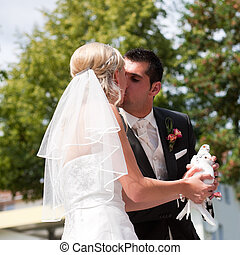 esküvő párosít, noha, galamb, alatt, kéz