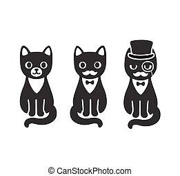 esmoquin, gatos, conjunto