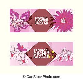 esotico, bello, flora, fiore, illustration., botanico, concept., blossom., vettore, tropicale, rosa, bandiere, pubblicità, natutal, orchidea, flyers., bazar, plants., exposition.