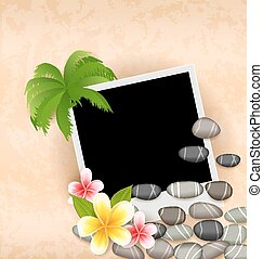 esotico, ciottoli, naturale, fondo, cornice, foto, frangipani, albero, palma, mare, fiori, vuoto