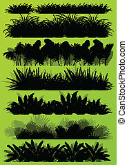 esotico, dettagliato, illustrazione, tropicale, piante, silhouette, vettore, giungla, fondo, collezione, erba, paesaggio