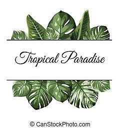 esotico, frame., philodendron, fondo, cima, paradiso, albero, leaves., monstera, tropicale, palma, giungla, foresta pluviale, greenery.