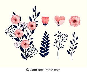 esotico, piante, set, rami, foglie, fiori tropicali
