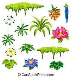 esotico, tropicale, flowers., set, plants.