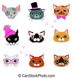 espèces, rigolote, différent, ensemble, têtes, coloré, caractère, vecteur, illustrations, chats