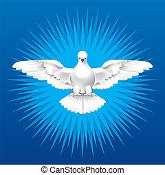 espírito sagrado