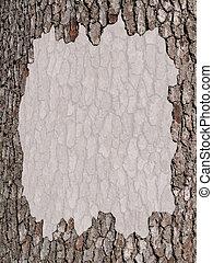 espaço cópia, com, um, casca de árvore, borda