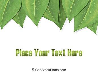 espaço, folhas, text., vetorial, experiência verde, horizontais, borda, eps-10., vazio