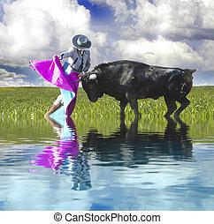 español, bullfight, con, agua, reflexión., matador, en, anillo, con, toro