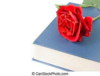 espace,  rose, Livre, fermé, texte, rouges