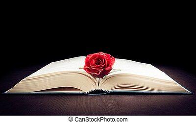 espace,  rose, Livre, texte, ouvert, rouges