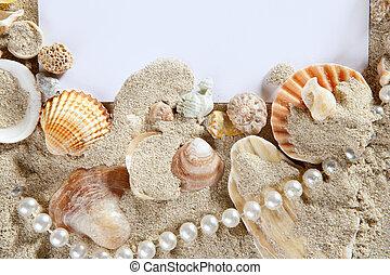 espacio de copia, verano, playa de arena, conchas, perla, blanco