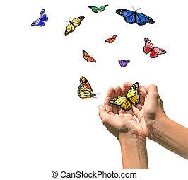 espacio, manos, liberar, mariposas, blanco, blanco