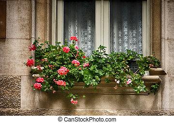 espagne, décoré, frais, fenêtre, fleurs, pots