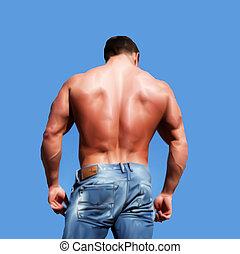 espalda, de, sexy, muscular, hombre, aislado, en, white.,...