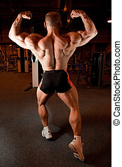 espalda, músculos, culturista, el suyo, demuestra