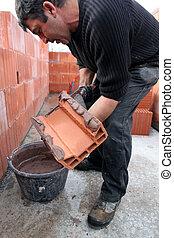 espalhar, tijolo, cimento, pedreiro