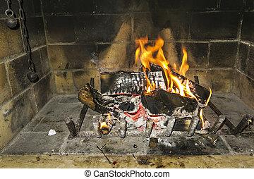 espantoso, fogo, lar
