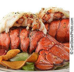 espargos, rabo, lagosta, grelhados