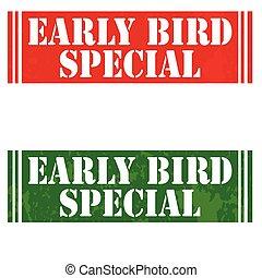 especial, pájaro, temprano