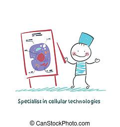 especialista, em, celular, tecnologias, fala, celas
