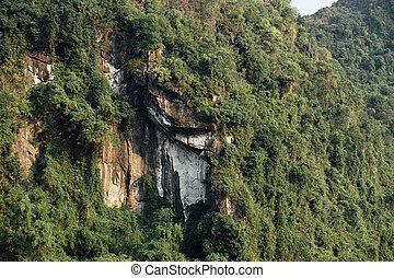 espectacular, cara piedra, con, árboles verdes, plano de fondo, asia, montaña