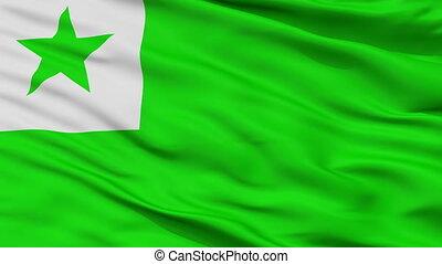 Esperanto Flag Closeup Seamless Loop