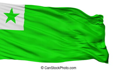 Esperanto Flag Isolated Seamless Loop