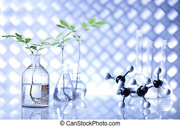 esperimento scienza, e, piante