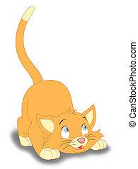 espiègle, chaton