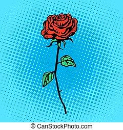 espinhos, rosa, flor, talo vermelho