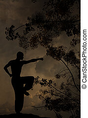 espiritual, practica, artes, marcial, plano de fondo, hombre