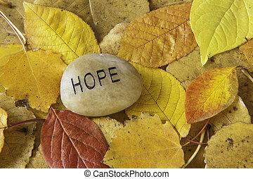 espoir, rocher, à, feuilles automne