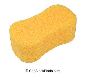 esponja, banho