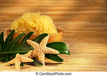 esponja mar, e, tigela madeira