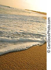 espuma, shore., onda