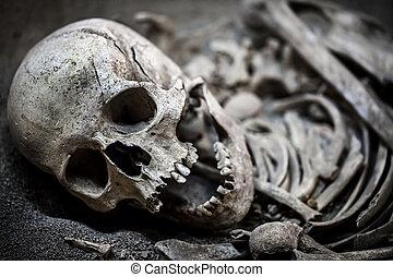 esqueleto, corpo morto, cabeça