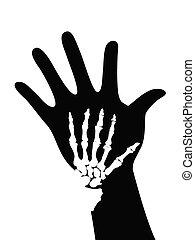 esqueleto, ligado, mão