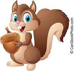 esquilo, caricatura, bolota, segurando
