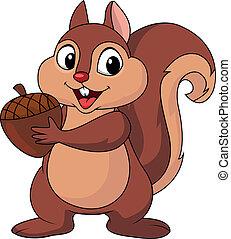 esquilo, caricatura, com, noz