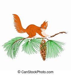esquilo, ramo, neve
