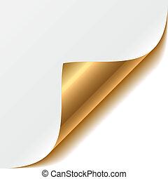 esquina, oro, rizado
