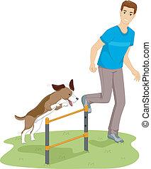 essai, agilité, chien