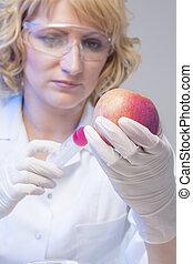 essai génétique, modifié, pomme