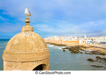 Seagull in Essaouira, city in the western Morocco. It has also been known by its Portuguese name of Mogador. Morocco, north Africa.