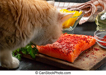 essayer, -, image, saumon, photo, chat, filet, table, morceau, voler, manger